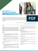 Gesti+¦n de Peque+¦as Empresas