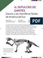 Viaje al sepulcro de los gigantes - Darwin y los mamíferos fósiles de América del Sur.