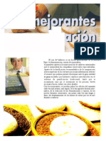 LOS MEJORANTES EN LA PANIFICACIÓN.doc