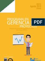 Gerproy Online 2013 IV Lima