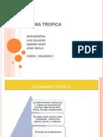 Leishmania Tropica