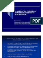 05 Sevilla G.; Agricultura transgénica