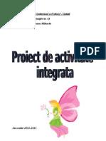 0 Proiect Pentru Inspectie Grad II