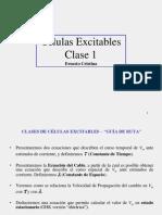 01 Excitabilidad 2010-1-3 Es