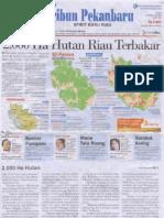 2000 Ha Hutan Riau Terbakar