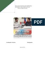 Plan de La Patria 2013 III y IV