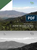 Altos de Chicauma