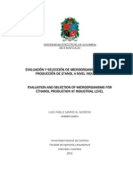 SELECCION DE ORGANISMOS PARA LA PRODUCCION DE ETANOL INDUSTRIAL.pdf