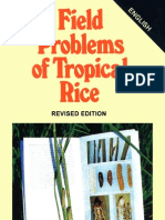 Field Problems of Tropical Rice