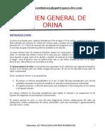 8550972 Examen General de Orina IntroduccionAnatomia