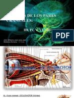 NÚCLEOS DE LOS PARES CRANEALES III, IV, V, VI, VII