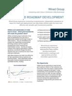 India Grid Roadmap & Biz Case Development Services