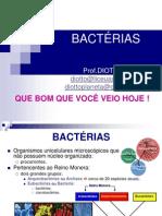 Bacterias Teresa