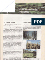 CAP.7-PLANTAS SEM SEMENTES-CRIPTÓGAMAS