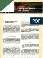 CAP.8-FANERÓGAMAS-PLANTAS COM SEMENTES