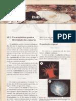 CAP.10-CNIDÁRIOS