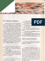 CAP.19-SISTEMAS CIRCULATÓRIOS