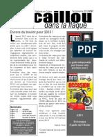 Caillou Dans La Flaque - 2013 1er Trimestre