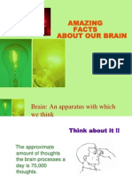 Amazing Facts About Brain