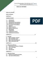 Deteccion de Gas y Evaluacion Del Reservorio1