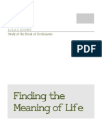 Finding the Meaning of Life