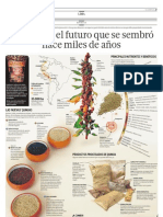infografa-quinua
