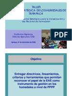 EAE y Humedales Guillermo Espinoza 01122009[1]