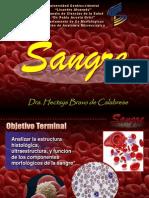 Presentacion de Sangre.ppt