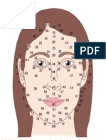 Facial Map Female