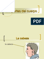 11_1_1_0_Partes_del