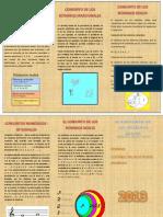 Tirptico Carolina Word - PDF
