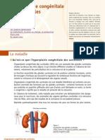 Hyperplasie Congenitale Surrenales Orphanet 09