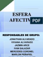 La Afectividad. 2010