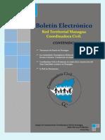 Revista Electronica X