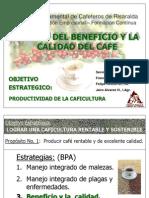 Beneficio y Calidad de Cafe