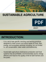 Sustainable agriculture.ppt