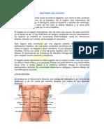 Anatomia Del Higado[1]