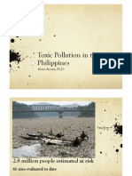 Toxic Pollution in the Philippines