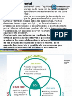 La Contaminación Ambiental-Gestion Ambiental