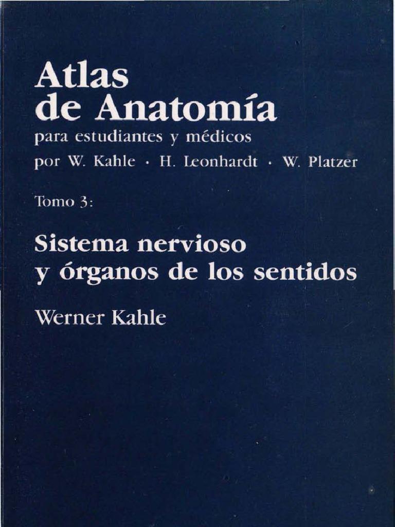 PDF Neuroanatomía Atlas de Anatomía Sistema Nervioso y Organos de ...