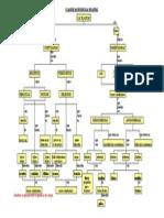 Clasif Plantas Mapa Conceptual