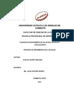 Proceso de pediatría Malena Analí Alejos Jacinto