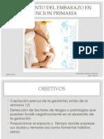 seguimientodelembarazoenatencionprimaria1-120522094130-phpapp01