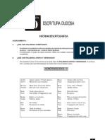 10 Escritura dudosa.pdf