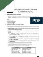 14 - Adjetivo calificativo.pdf