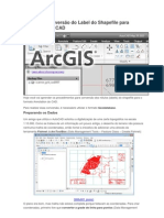 ArcGIS 10 Conversão do Label do Shapefile para Annotation do CAD