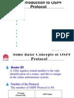 SAT01 OSPF