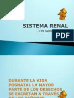 EMBRIOLOGIA Sistema Renal