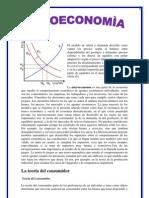 La Microeconomia Resumen
