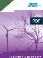 Uk Energy in Brief 2012